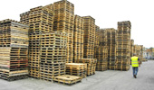Used Pallets